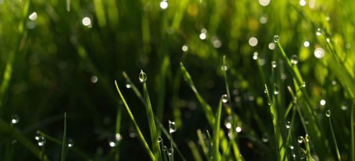 Irrigation Systems Installation & Repair pretoria